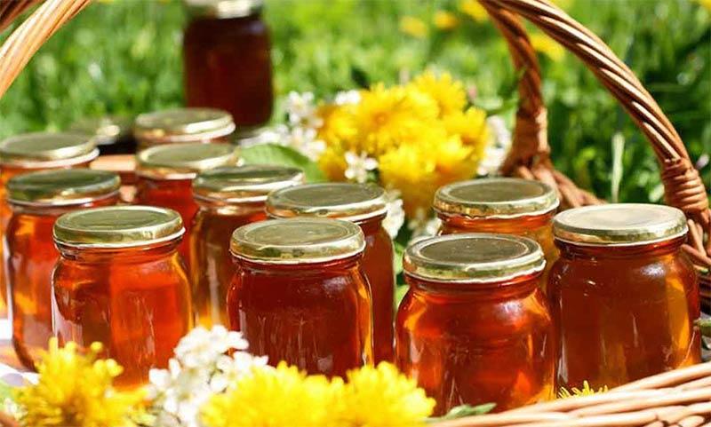 Каким медом можно отравиться и что в этом случае следует предпринять