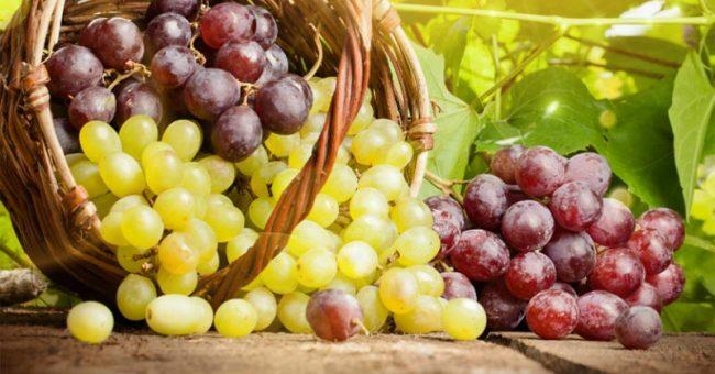 У ребенка отравление виноградом
