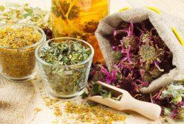 Полезные травы для очищения организма