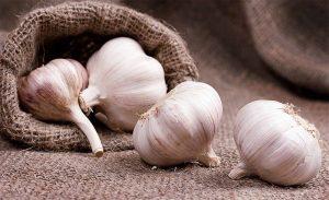 Как принимать чеснок от глистов и паразитов