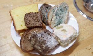 Куски хлеба с плесенью