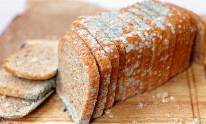 Отравление плесенью на хлебе